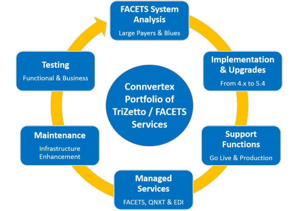 TriZetto FACETS Services